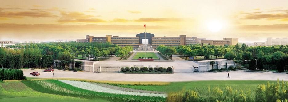 宁波大学成考函授